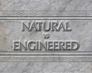 Evaluating-the-Pros--Cons-of-Natural-vs-Engineered-Stone-for-Your-Naples-Home.jpg